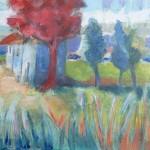 landschap 4