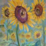 zonnebloemen3